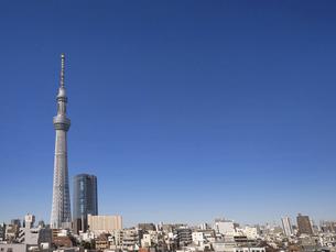 東京スカイツリーと街並み の写真素材 [FYI04815288]