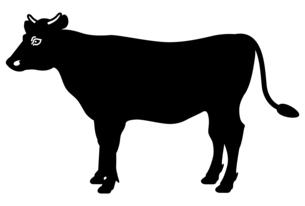 牛の全身イラスト【側面】のイラスト素材 [FYI04815357]
