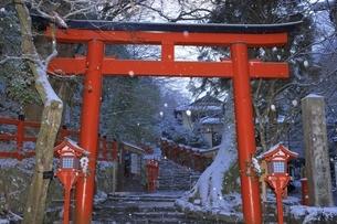貴船神社 京都の写真素材 [FYI04815567]