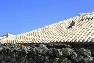 竹富島 赤瓦民家とシーサーの写真素材 [FYI04815579]