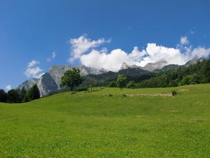 スイス、マイエンフェルト(ハイジの里)の写真素材 [FYI04815695]