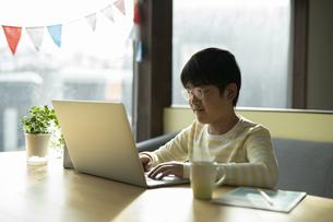 パソコンで学習する男の子の写真素材 [FYI04815887]