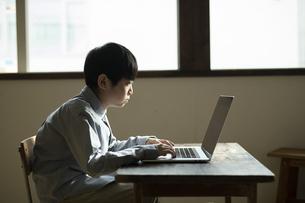 パソコンで学習する男の子の写真素材 [FYI04815918]