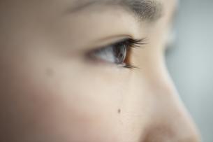 遠くを見つめる女の子の写真素材 [FYI04816079]