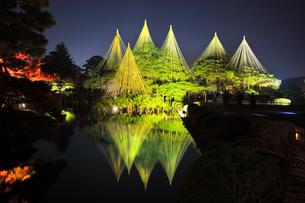 北陸金沢 兼六園ライトアップ秋の段の写真素材 [FYI04816259]