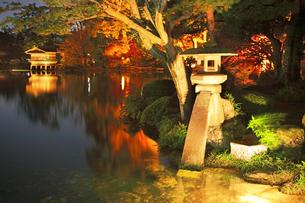 北陸金沢 紅葉の兼六園ライトアップ秋の段の写真素材 [FYI04816263]