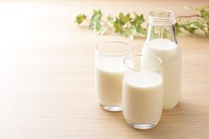 牛乳の写真素材 [FYI04816353]