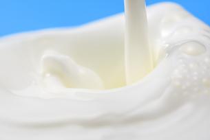 ミルクの写真素材 [FYI04816362]