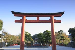 鶴岡八幡宮の三の鳥居の写真素材 [FYI04816757]