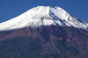 新雪の富士山の写真素材 [FYI04816839]