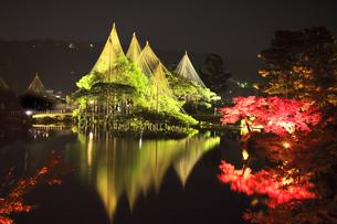 北陸金沢 兼六園ライトアップ秋の段の写真素材 [FYI04817316]