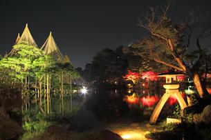 北陸金沢 兼六園ライトアップ秋の段の写真素材 [FYI04817323]