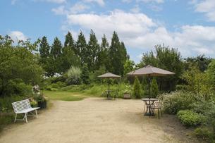 滋賀・柳が崎湖畔公園の洋風庭園の写真素材 [FYI04817620]
