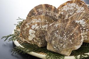 帆立貝の写真素材 [FYI04817653]