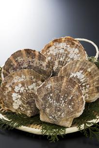 帆立貝の写真素材 [FYI04817654]