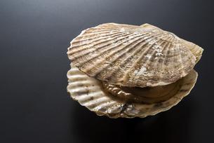 ホタテ貝の写真素材 [FYI04817658]
