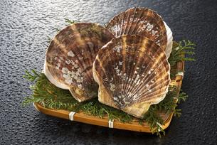 ホタテ貝の写真素材 [FYI04817659]