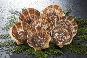 ホタテ貝の写真素材 [FYI04817660]