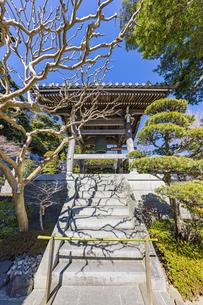 観音造立1300年を迎えた長谷寺の鐘楼の写真素材 [FYI04817814]
