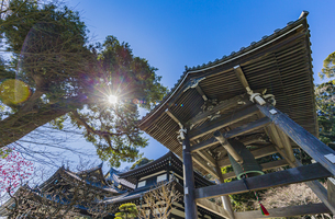 観音造立1300年を迎えた長谷寺の鐘楼とかきがら稲荷観音堂の写真素材 [FYI04817816]