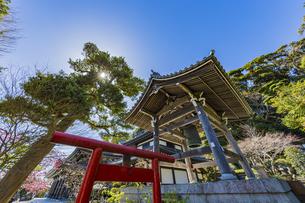 観音造立1300年を迎えた長谷寺の鐘楼とかきがら稲荷の写真素材 [FYI04817817]