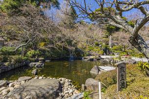 観音造立1300年を迎えた長谷寺の方生池の写真素材 [FYI04817820]