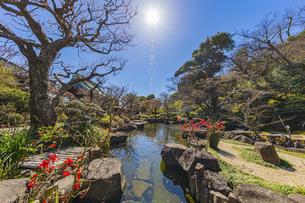 観音造立1300年を迎えた長谷寺の方生池の写真素材 [FYI04817822]