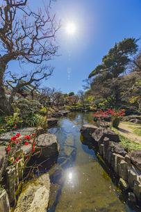 観音造立1300年を迎えた長谷寺の方生池の写真素材 [FYI04817823]