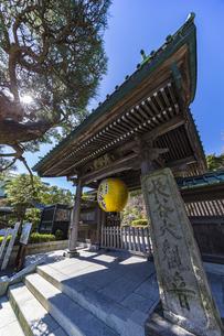 観音造立1300年を記念して掲げられた長谷寺山門の金色提灯の写真素材 [FYI04817833]