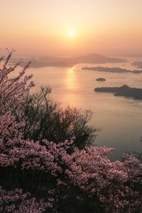 竜王山の桜と瀬戸内海の日の出 広島県の写真素材 [FYI04817996]