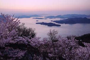 暁の瀬戸内海と竜王山の桜の写真素材 [FYI04817997]