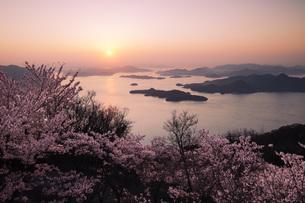 竜王山の桜と瀬戸内海の日の出 広島県の写真素材 [FYI04817998]