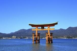厳島神社 大鳥居の写真素材 [FYI04818530]