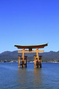 厳島神社 大鳥居の写真素材 [FYI04818531]
