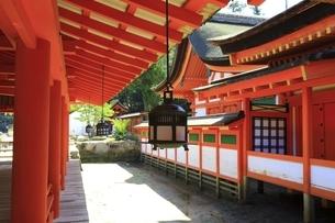 厳島神社 東回廊と釣燈籠の写真素材 [FYI04818532]