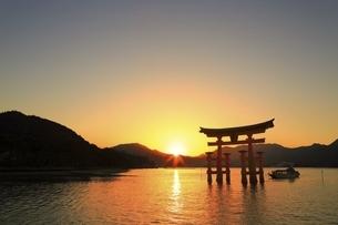 厳島神社 大鳥居と夕日の写真素材 [FYI04818536]