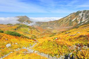 秋の立山 紅葉の室堂平と浄土沢の写真素材 [FYI04818562]