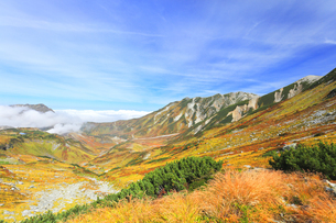 秋の立山 紅葉の浄土沢と別山などの山並みの写真素材 [FYI04818566]