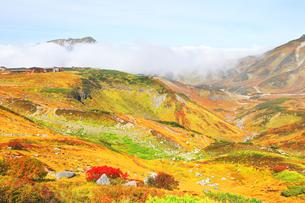 秋の立山 紅葉の室堂平と浄土沢の写真素材 [FYI04818572]
