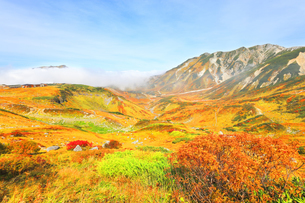 秋の立山 紅葉の室堂平と浄土沢の写真素材 [FYI04818574]
