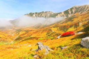 秋の立山 草紅葉と山並みの写真素材 [FYI04818579]