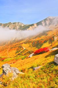 秋の立山 草紅葉と山並みの写真素材 [FYI04818581]