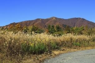 秋の蒜山高原の写真素材 [FYI04818603]