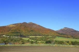 秋の蒜山高原の写真素材 [FYI04818604]