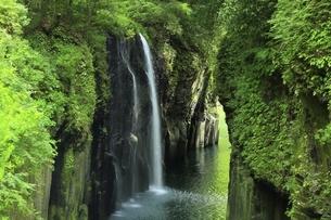 高千穂峡 真名井の滝の写真素材 [FYI04818607]