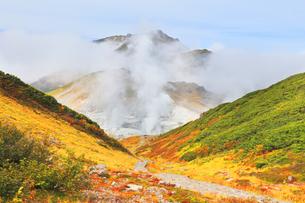秋の立山 紅葉の室堂平より地獄谷の噴煙と大日連山の写真素材 [FYI04818901]