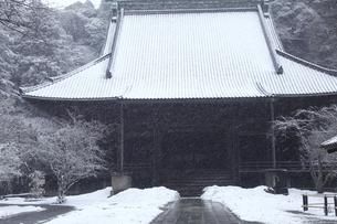 鎌倉の妙本寺と雪の写真素材 [FYI04819646]