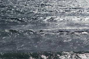 日差しでキラキラ光る海の背景素材用写真の写真素材 [FYI04819720]