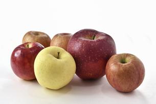白背景のリンゴの写真素材 [FYI04819847]