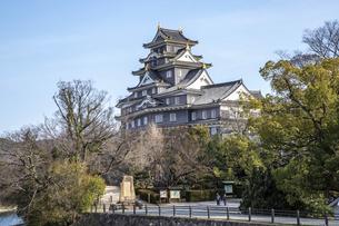 岡山城(横構図・全体)の写真素材 [FYI04819918]